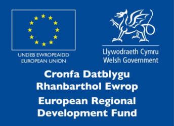 Welsh Government and European Regional Development Fund